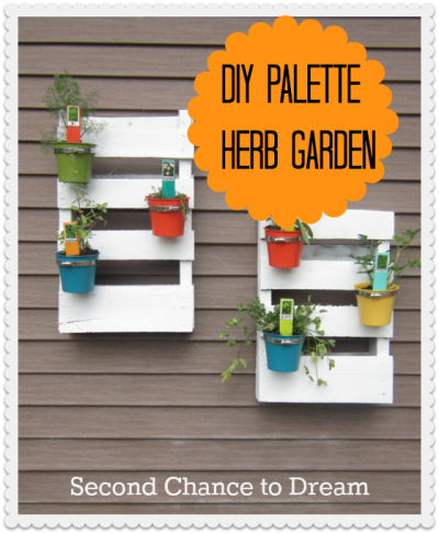 Second Chance to Dream Palette Herb Garden