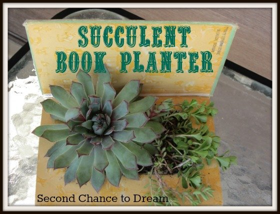 Second Chance to Dream: Succulent Book Planter
