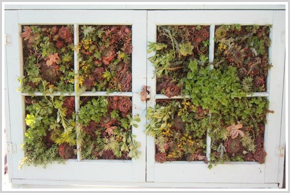 vertical+garden+filled+in Summer Subway Outdoor Wall Art + Vertical Gardening Update