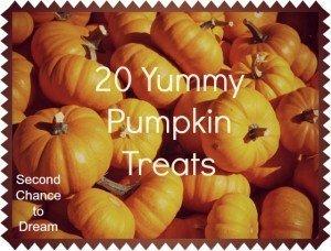 Second Chance to Dream: 20 Yummy Pumpkin Treats