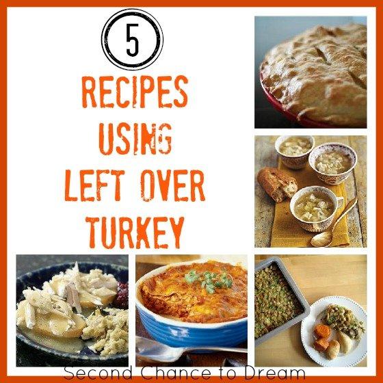 Got Turkey Leftovers?? 5 Recipes that use Left Over Turkey