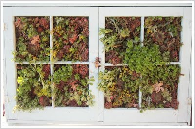 vertical+garden+filled+in 10 Favorite Posts of 2012