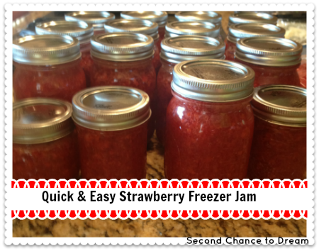Second Chance to Dream: Straberry Freezer Jam