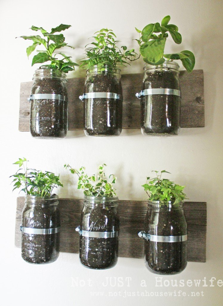 mason jar planter board 747x1024 Mason Jar Wall Planter