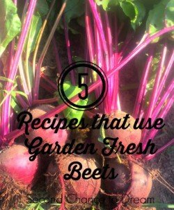 5 Recipes that use Garden Fresh Beets