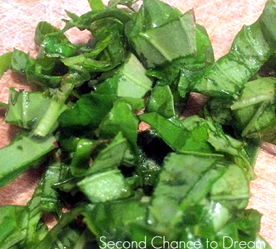 Second Chance to Dream: Chopped Basil