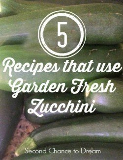 Second Chance to Dream: 5 Recipes that use Garden Fresh Zucchini #zucchini #recipes