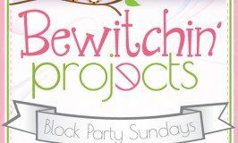 Bewitching-Projects-LP-266x160