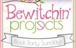 Bewitching-Projects-LP-300px-250x25037