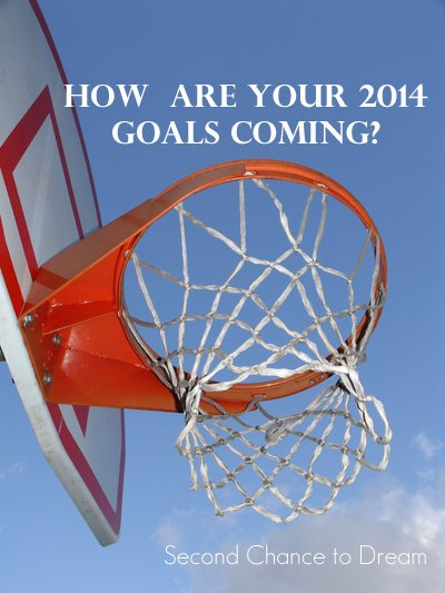 How are your 2014 Goals coming