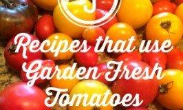 Second Chance to Dream: 5 Recipes that use Garden Fresh Tomatoes #gardenfresh