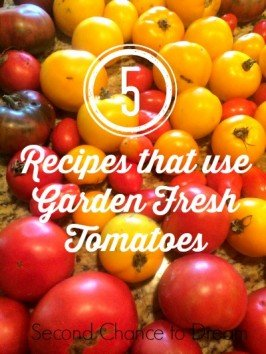 Second Chance to Dream: 5 Recipes that use Garden Fresh Tomatoes #gardenfresh