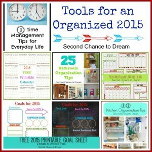 Second Chance to Dream: Tools for an Organized 2015