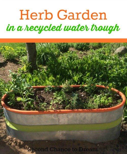 creative herb garden