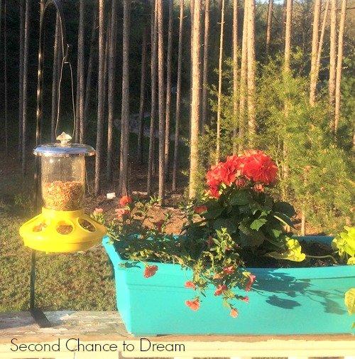 Second Chance to Dream: Mason Jar Bird Feeders with Flowers