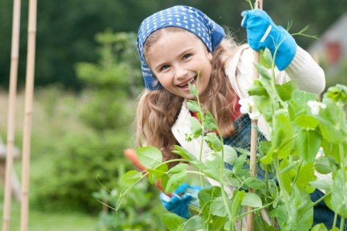 Second Chance to Dream: Garden Activities for Children