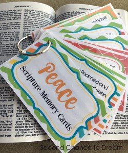 Peace- do you have it?  +Peace Scripture Memory Cards