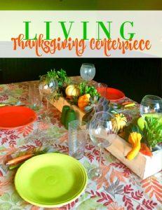 Living Thanksgiving Centerpiece
