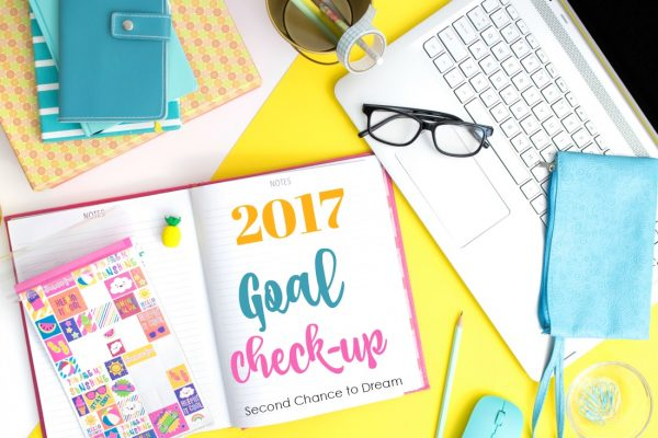 2017 Goals Check-up