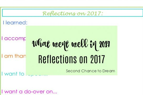 What did you do well in 2017?  Reflections on 2017